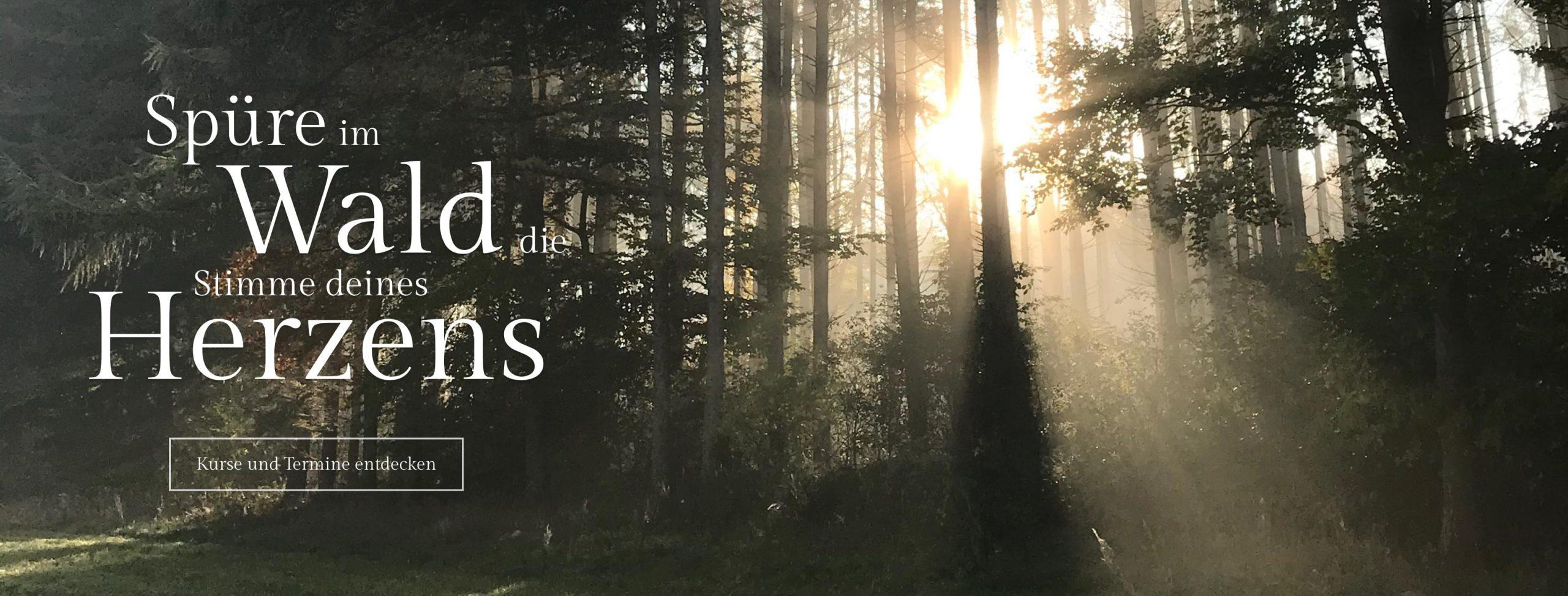 Waldbaden Termine und Kurse